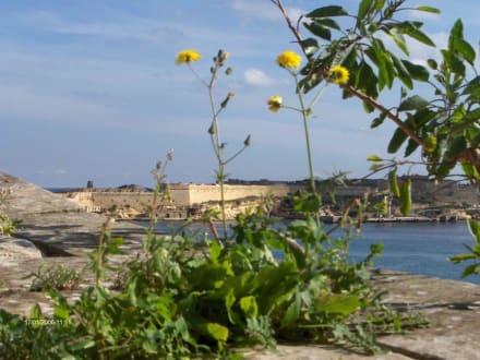 Aussicht in Valetta - Hafen Valletta