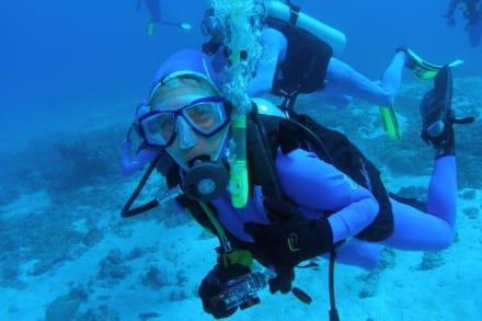 Tagestur mit Poseidon-Cruises - Poseidon Cruises