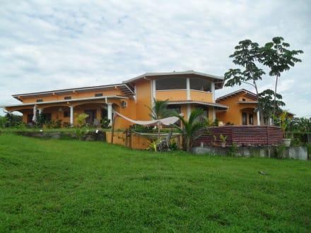 Die Finca mit Pool und Hängematten - Finca Buena Vista Las Lajas