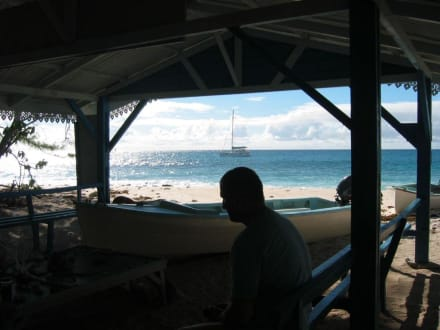 Die Vogelinsel Cousin  - Katamaran Tour Baie Ste Anne