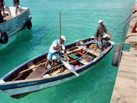 Fischer von St. Maria - Fischereihafen Santa Maria
