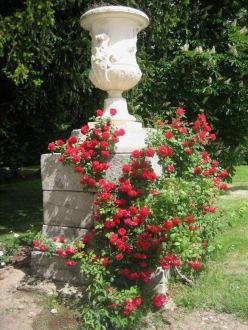 Campo del Moro - nettes Detail - Jardines del Campo del Moro