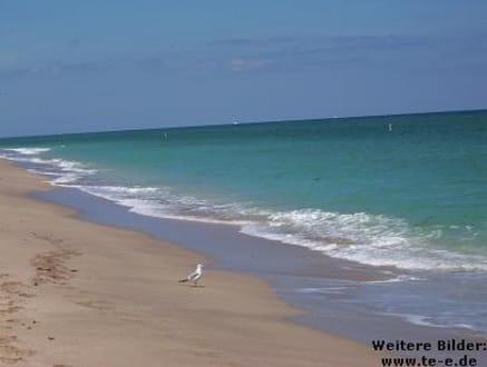Traumhafter, menschenleerer Sandstrand - Hillsboro Beach