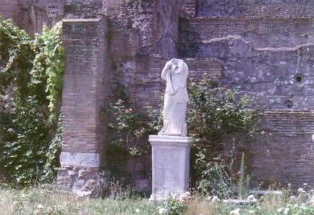 Frau ohne Kopf - Forum Romanum