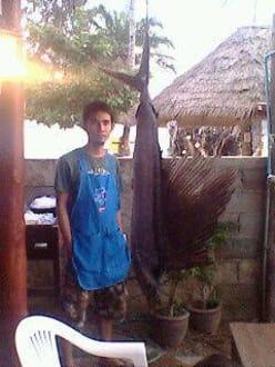 Restaurant - Coconut Grove