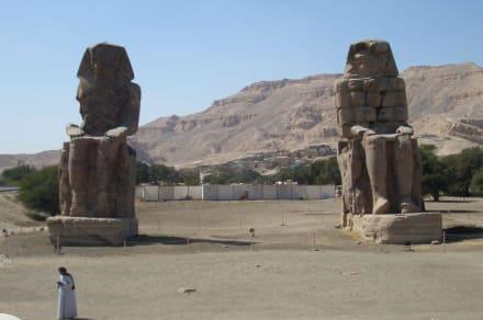 Memnon Kolosse in Luxor - Kolosse von Memnon