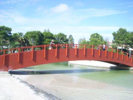 Strandbrücke am Platja de Muro - Strand Alcudia