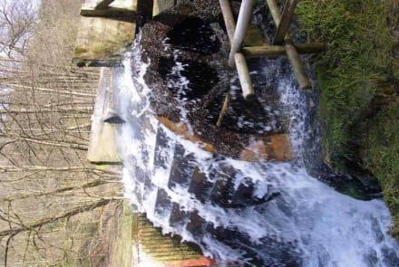Das Wasserrad in Action - Wasserkraftwerk