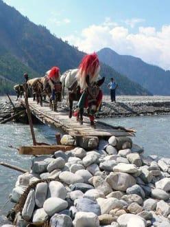 Mulis Jomsom Trekk - Trekking Team PVT. LTD Katmandu