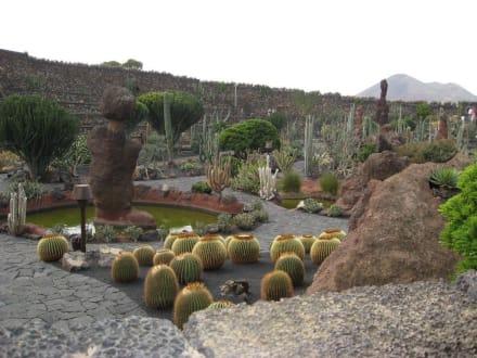 1500 rodzajow kaktusow - Jardin de Cactus / Kaktusgarten Guatiza