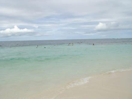 Die Insel - Paradies Insel