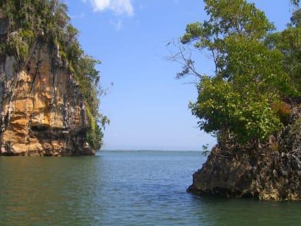 Muschelkalkfelsen - Los Haitises Nationalpark