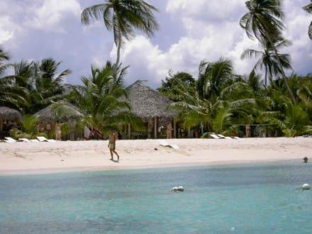 Hütten am Strand - Isla Saona