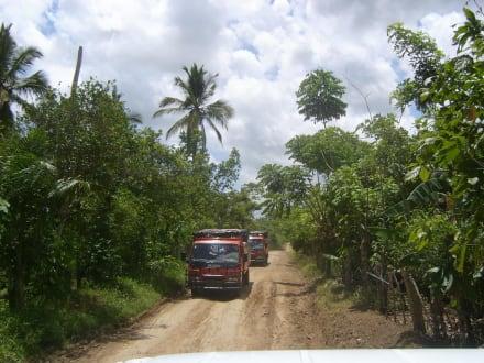 Gegenverkehr - Truck Safari Bayahibe