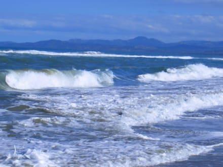 Wellen - Playa Camino