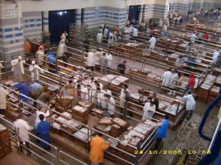 Fischhandel - Fischereihafen Agadir