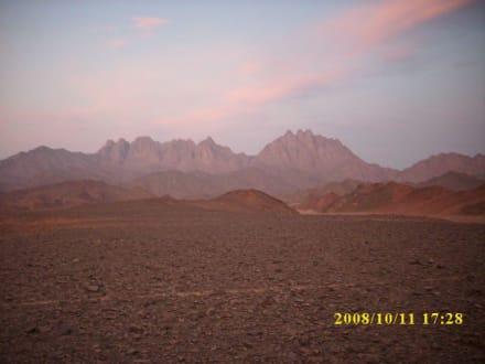 Steinwüstenlandschaft - Wüstentour Hurghada