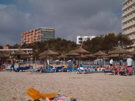 Bars von weiten am Strand von Palma Nova - Strand Palma Nova