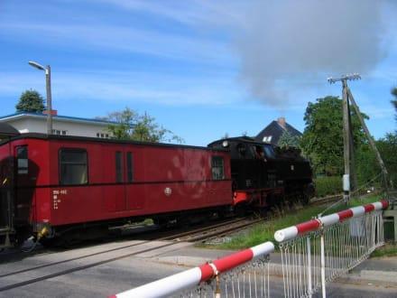 Dampflok Molli am Bahnübergang - Bäderbahn Molli Bad Doberan - Kühlungsborn