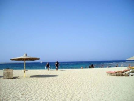 Bucht von Abu Dabab - Tauchen Abu Dabab