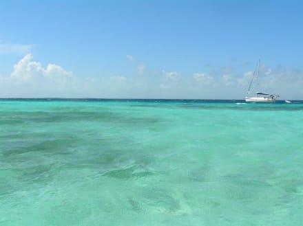Die Malediven von Venezuela - Los Roques