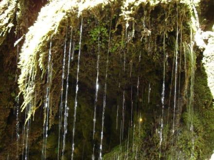 Felsengarten Wasserfall - La Granja