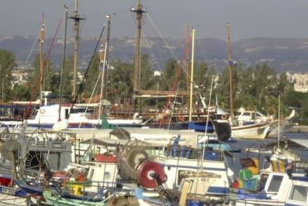 Hafen in Paphos - Hafen Paphos
