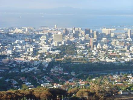 Blick vom Tafelberg - Tafelberg