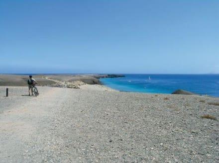 Mit dem Fahrrad zu den Papagayos - Playa de Papagayo