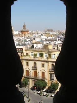 Sonstige Gebäude - Kathedrale von Sevilla