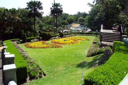 Der Zoo ist schön angelegt - Taronga Zoo