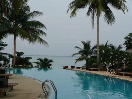 Pool - Hotel Green Papaya Resort
