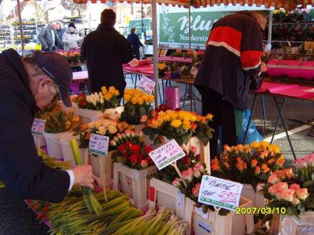 """Qualitäts-Blumen von """"Blumen Hoof""""! - Heider Marktplatz"""