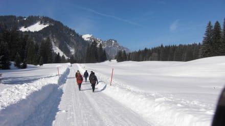 Wanderung - Wallberg