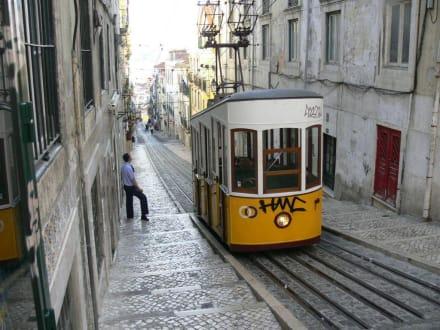 Typisch Lissabon - Altstadt Lissabon