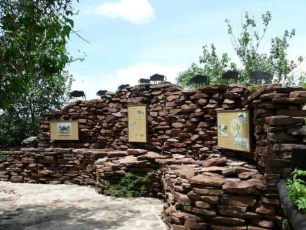 Nature Walk - Visitors Center
