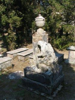 Auf dem Britischen Friedhof von Korfu-Stadt 2 - Britischer Friedhof