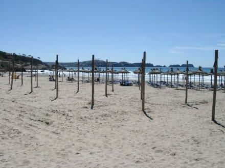 Der Strand in Paguera im Frühjahr - Strand Paguera/Peguera