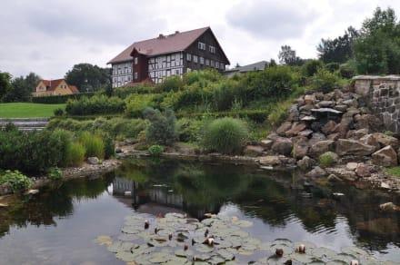 Naturreservat/Zoo - Schmetterlings- und Reptilienhaus Jonsdorf