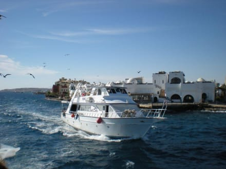 Im Hintergrund Hurghada - Ausflug nach El Gouna