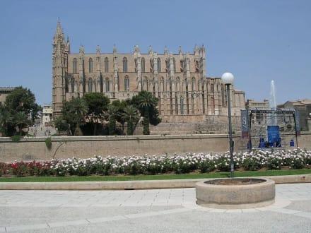 Kathedrale - Kathedrale La Seu