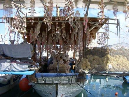 Fischerboot mit Muscheln - Yachthafen Mandraki