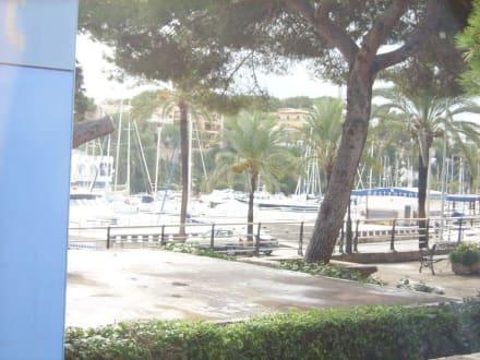 Hafenbecken - Yachthafen Porto Cristo