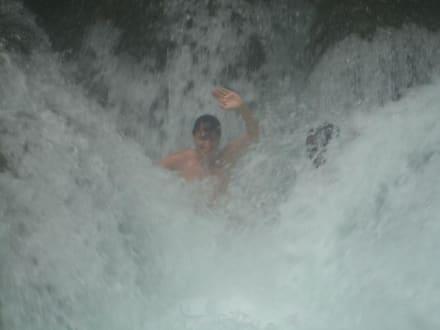 Mayfield Falls - Mayfield Falls