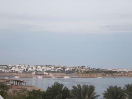 Blick aus dem Zimmer - Sultan Gardens Resort