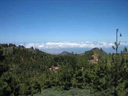 Auf dem Dach Gran Canarias - Pico de las Nieves