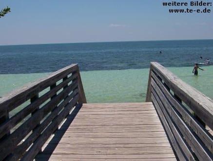 Strand von Marathon (Florida Keys) - Florida Keys