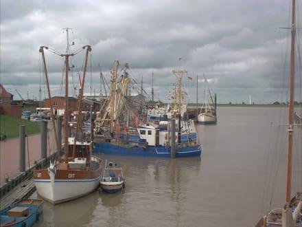 Hafenansicht - Hafen Ditzum