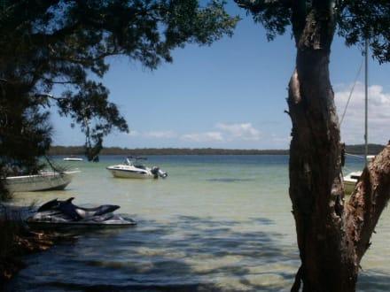 Myall Lakes / Shelly Beach - 2 - Myall Lakes Nationalpark