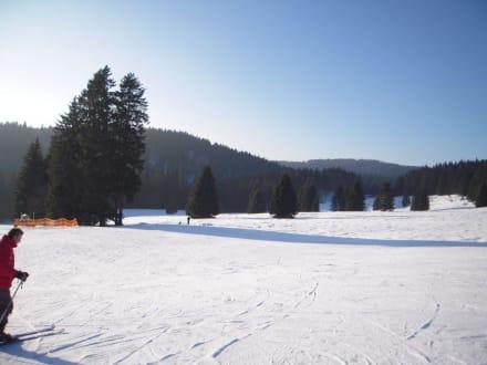 Skigebiet Muggenbrunn - Skigebiet Muggenbrunn